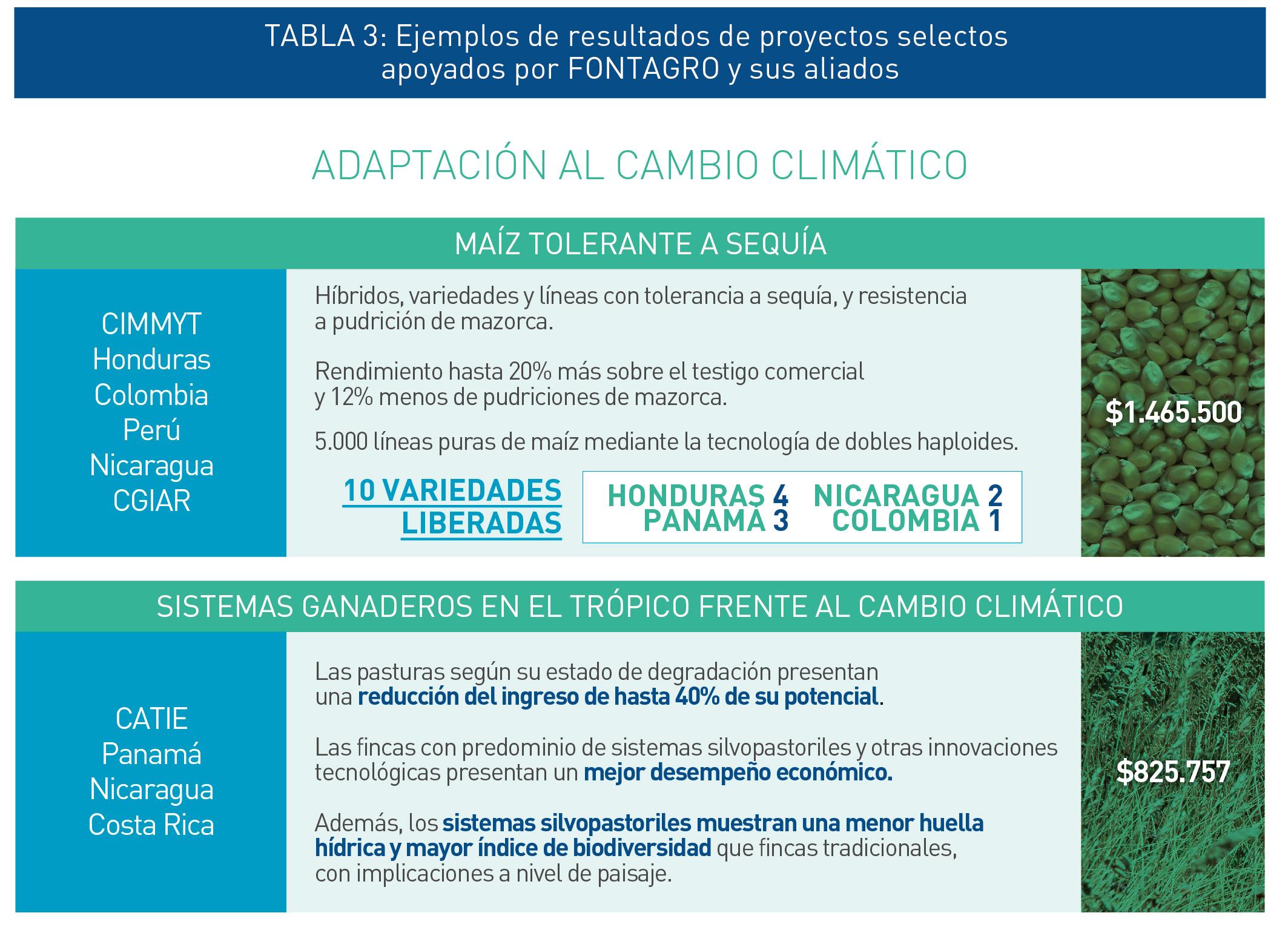 adaptacion-cambio-climatico