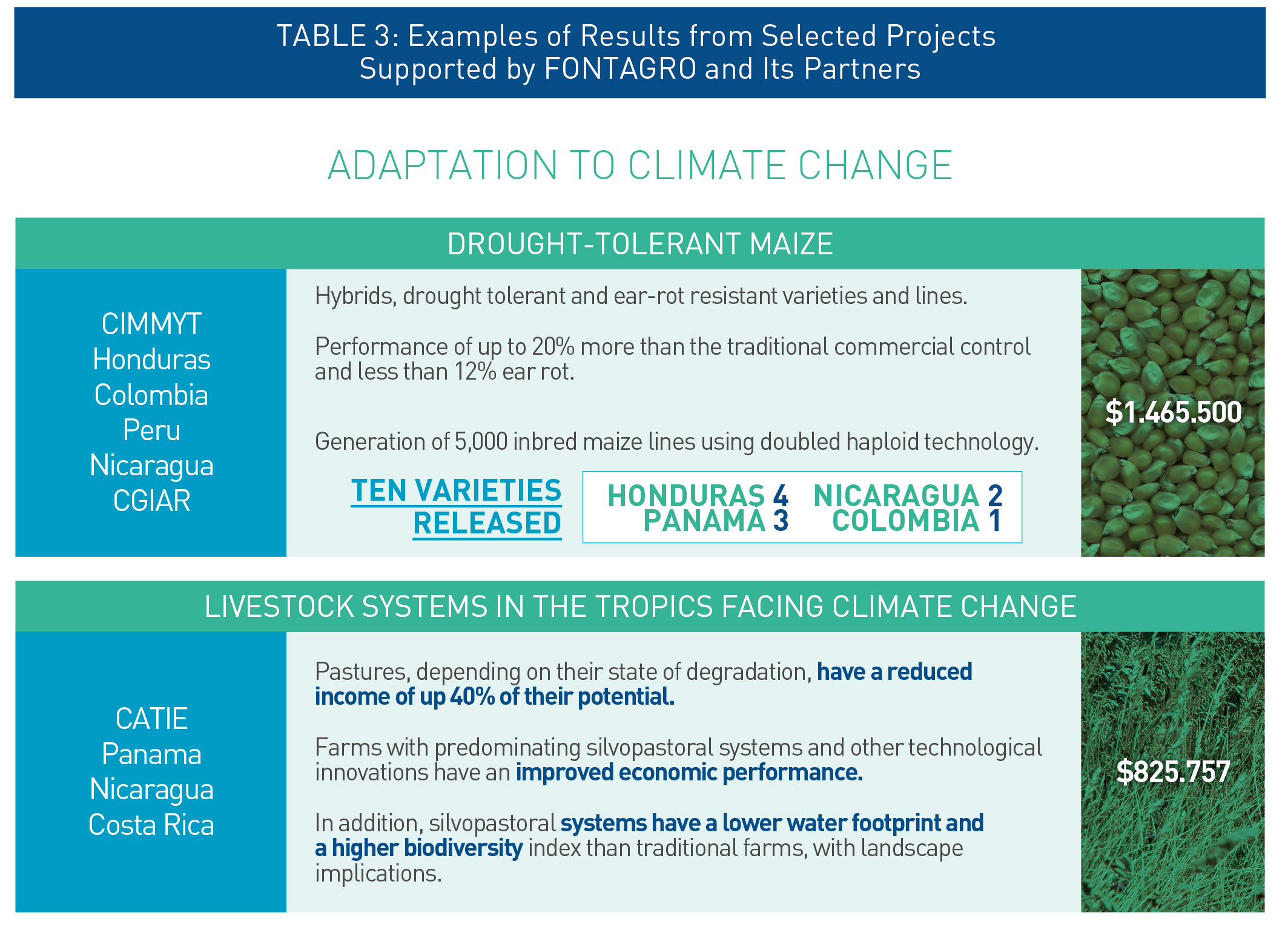 climate-change-adaptation