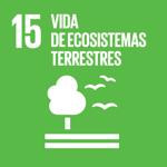 Vida de ecosistemas terrestres