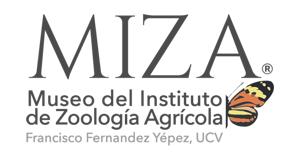 MIZA - UCV