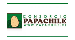 Consorcio Papa