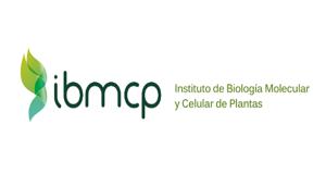 IBMCP - UPV