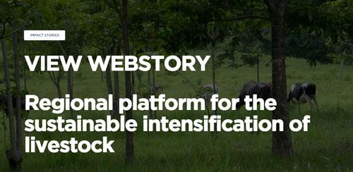 Webstory